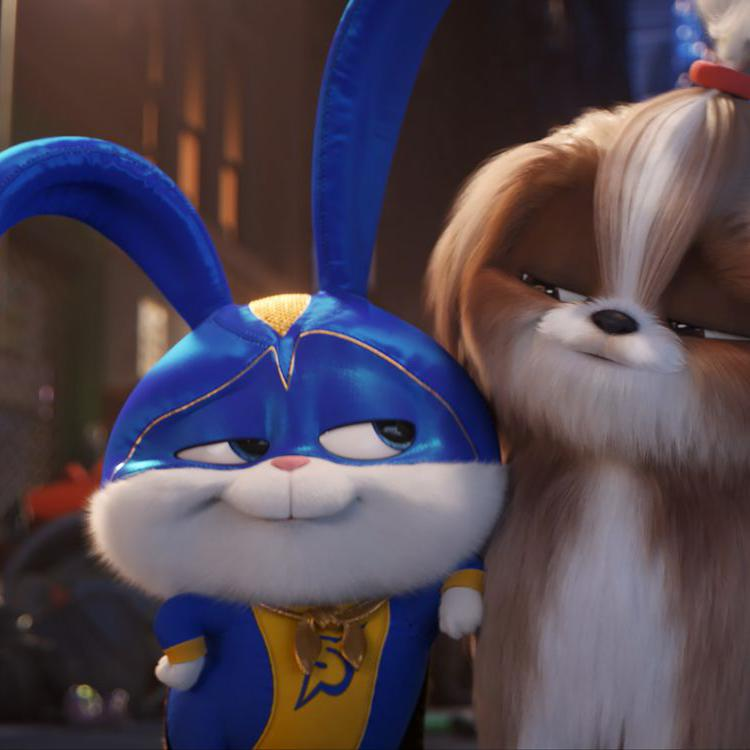 © 2018 - Illumination Entertainment/Universal Pictures
